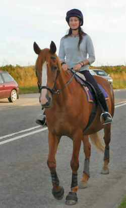 Kizzy heading for home in her new leather bitless bridle