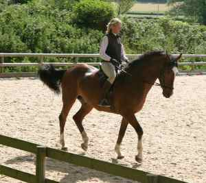 Sarah riding with Bitless Bridle